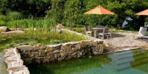 piscine-ecologique